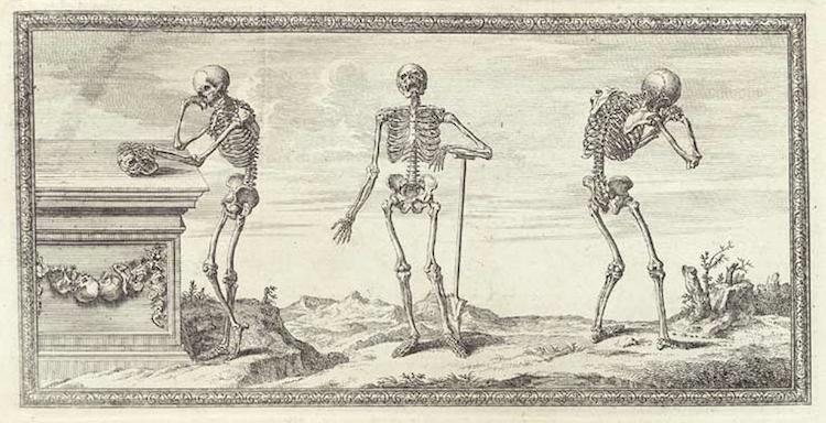 001bonesskeletons1.jpg