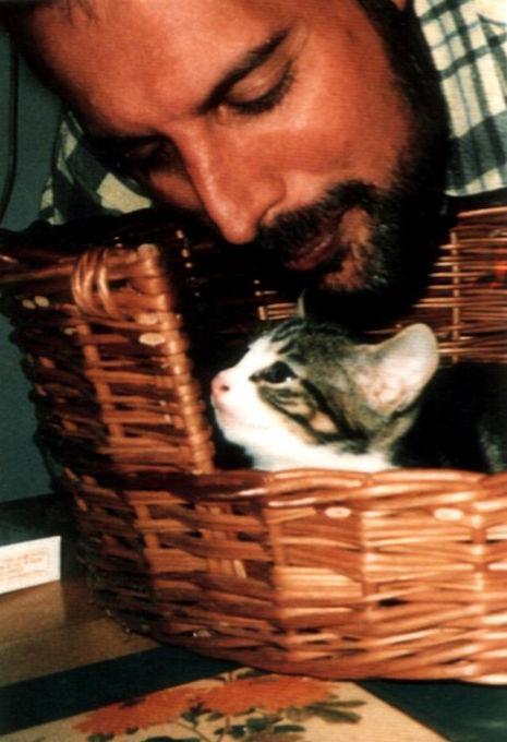 09fmcats.jpg