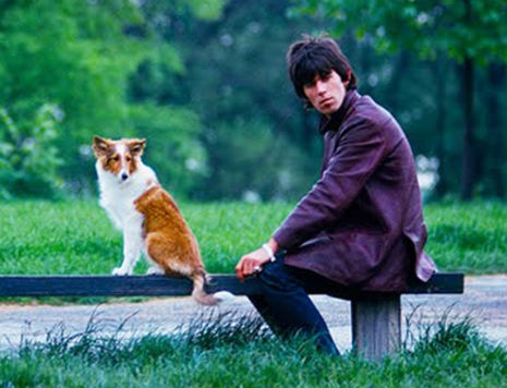Rock stars with their cats and dogs