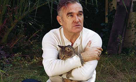 Morrissey hugs a cat