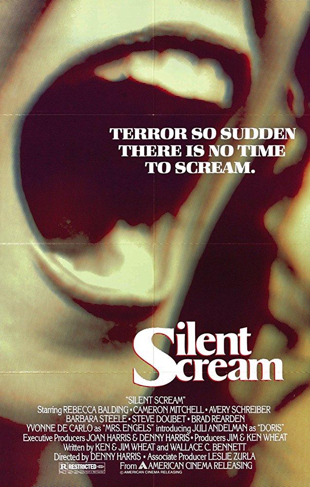 Silent Scream poster