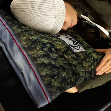Sweet dreams with the Giant Stash pillowcase
