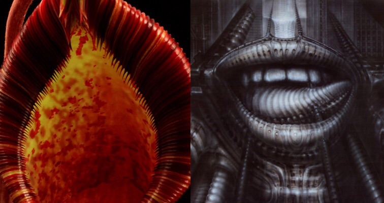 New carnivorous plant named for H.R. Giger is beautiful (in a vagina dentata kind of way)