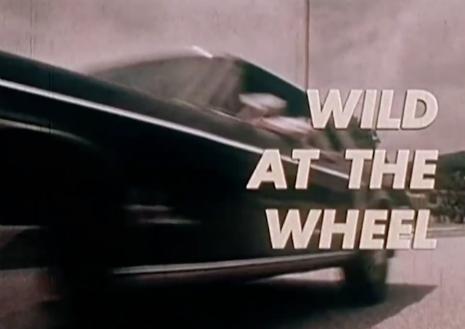Wild at the Wheel