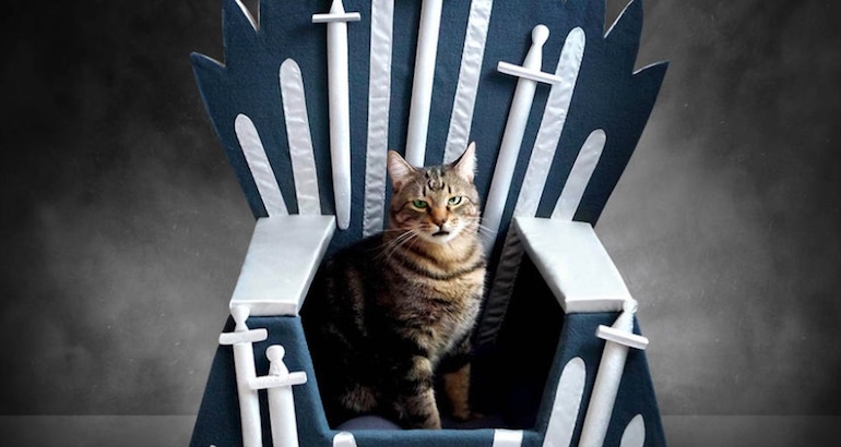 Show your feline the respect it deserves with a 'Game of Thrones' cat bed