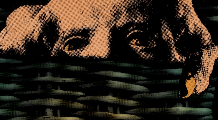 The soundtrack to cult comedy horror classic 'Basket Case' is finally being released—a DM premiere