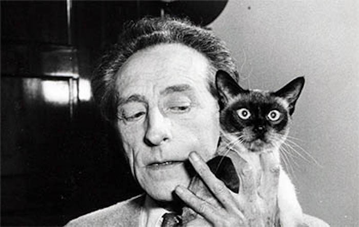 Filmmakers and felines: Jean Cocteau had a club for cat lovers!