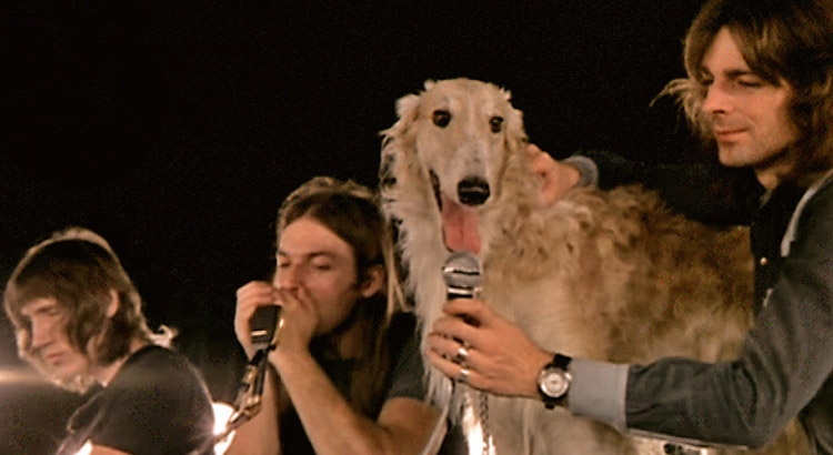 That time a dog named Seamus joined Pink Floyd in 1971