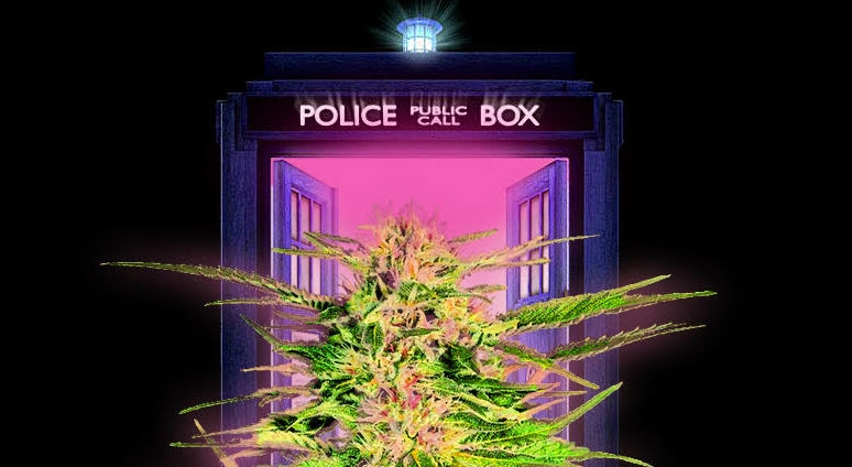 A TARDIS that Grows Weed with Artificial Intelligence