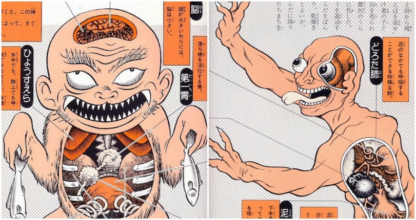 Anatomical illustrations of Japanese folk monsters