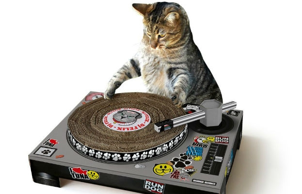 Cat scratch fever: Yes, there is a DJ turntable so that cats can 'scratch'