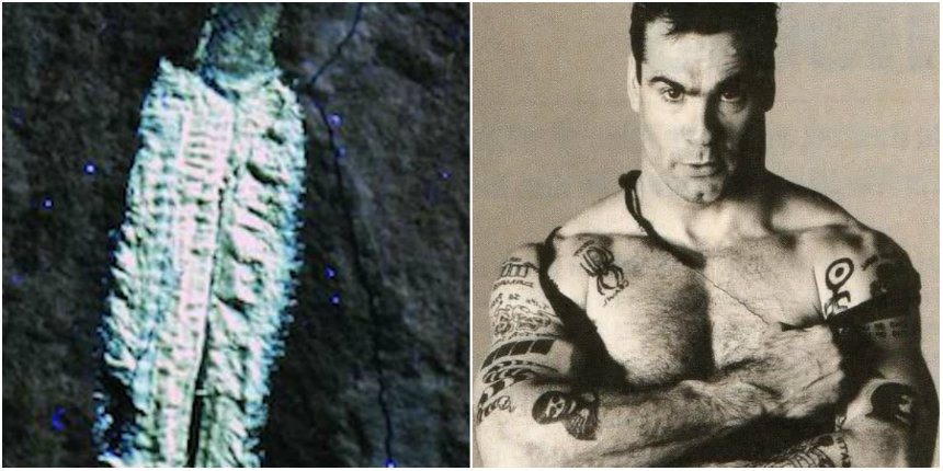 Scientists name 'muscular' fossil fireworm after Henry Rollins