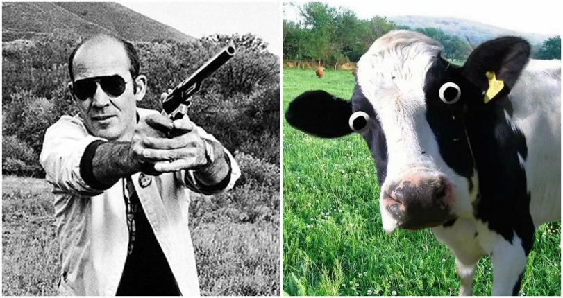 Watch Hunter S. Thompson exchanging gunfire with his neighbors over their cows