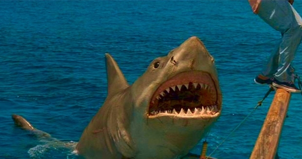 Study finds scary 'da dun da dun' music causes people to view sharks negatively