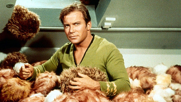 Watch this meticulously edited 'Star Trek' fan video for William Shatner's awesome Pulp cover