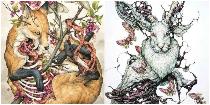 Beautifully grotesque illustrations highlight death and rebirth in the animal kingdom