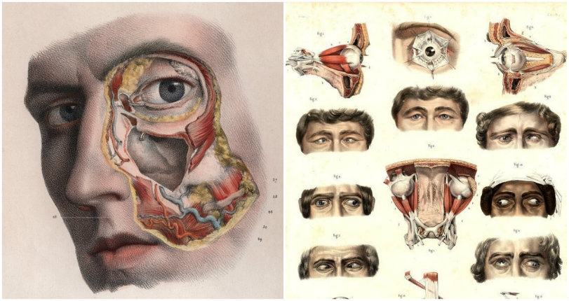 Horrifyingly detailed images of surgical procedures from the early 1800s