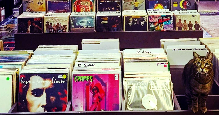 An interactive map of every record store on Earth. You're welcome.