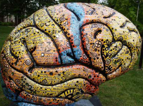 Artists' brains are 'structurally different' new study claims
