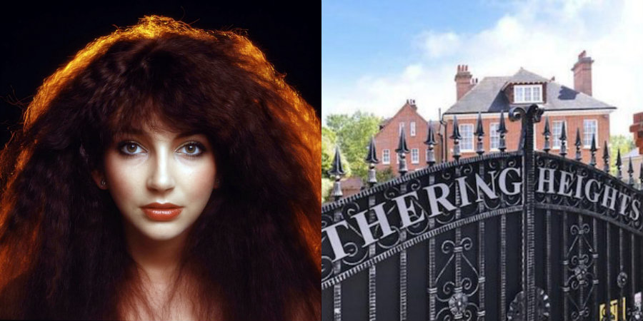 Kate Bush's former home is for sale, free turtle
