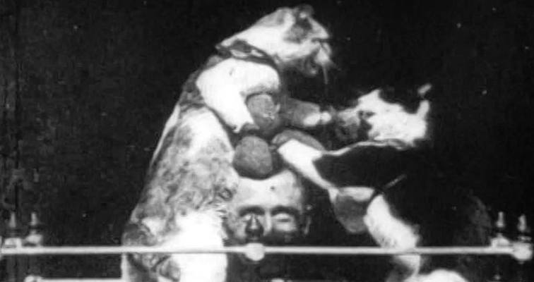 Thomas Edison filmed strippers, drug dens, animal murders, and THE VERY FIRST CAT VIDEO