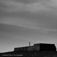 'Four Landscapes': Noise Artist Elizabeth Veldon releases new 4-track album