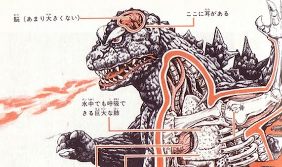 Anatomical illustrations of Godzilla and other Japanese monsters