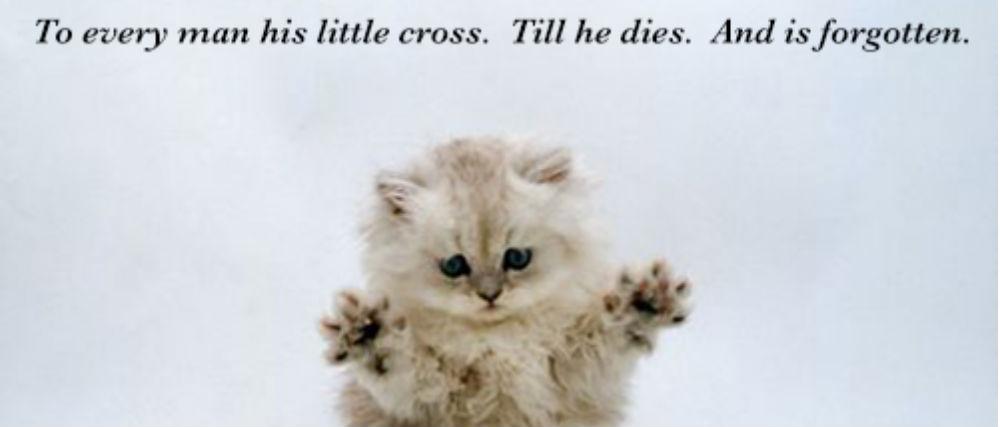 'Samuel Beckett Motivational Cat Posters'