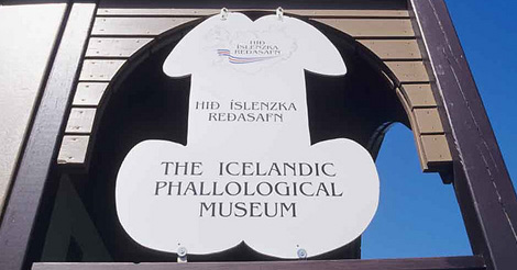Iceland has a penis museum, no biggie