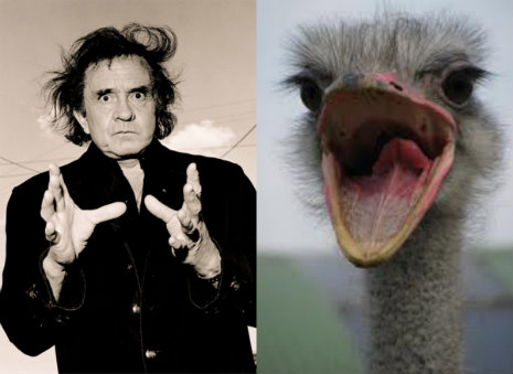 How Johnny Cash was nearly killed by an ostrich in 1981