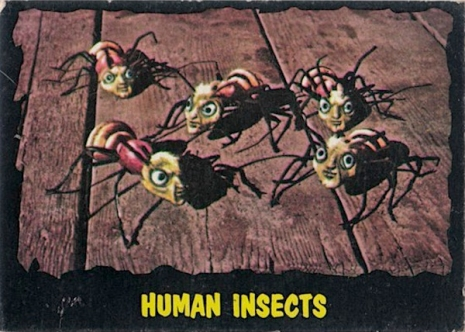 032OLhumaninsects.jpg
