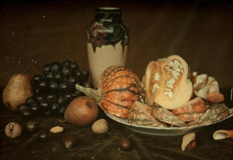 0_00-Still-life-with-brown-fruit-c.1913.jpg