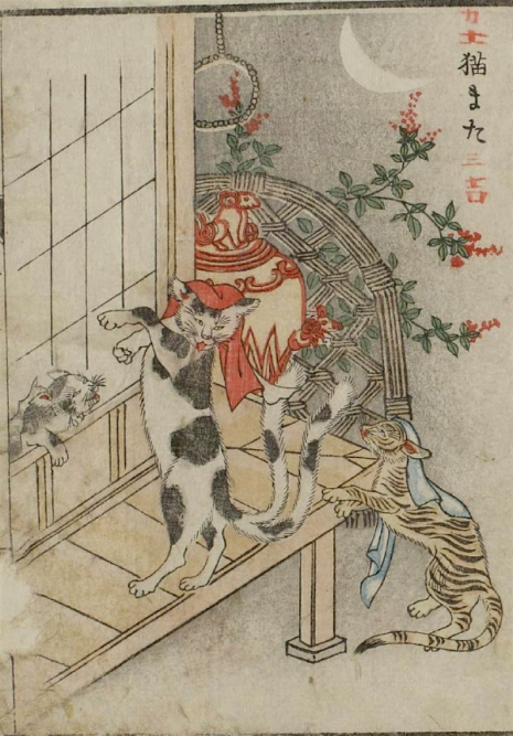 Weird monsters of Japanese folklore  13Nekomata_465_667_int