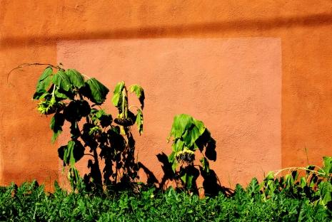 The unintentional beauty of graffiti removal @Dangerous Minds Artes & contextos 3870976365 5e0282933f b 465 312 int