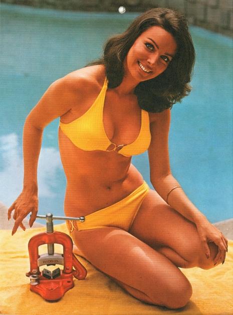 Bikini girl for ridgid