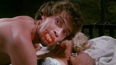 Johnny Wadd: Vampire