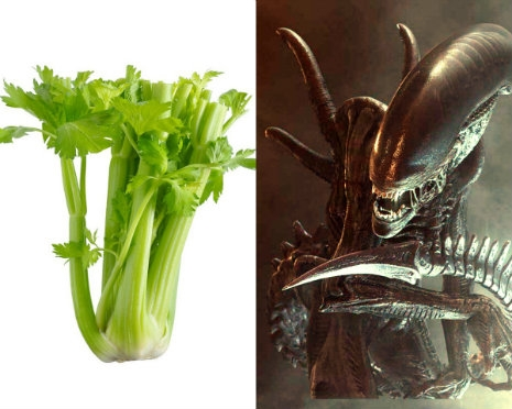 Listen to celery being used by Hollywood sound designers to