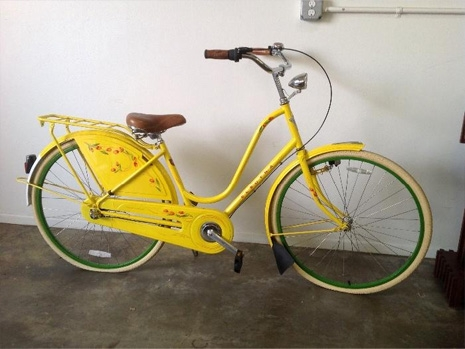 exene bicycle