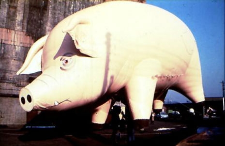 When Pigs Fly: 1977 TV commercial for Pink Floyd's 'Animals