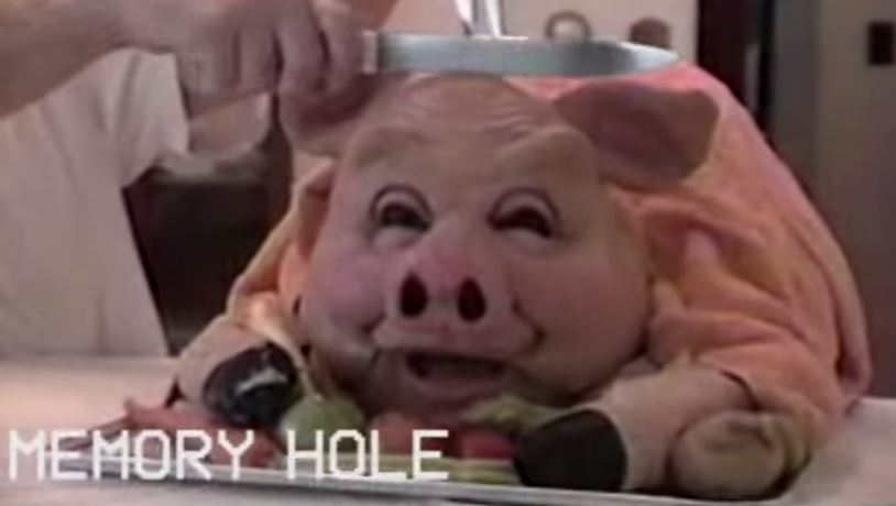 Drop down The Memory Hole with America's Surrealist Home Videos