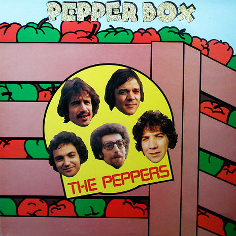 'Pepper Box': The funkiest space-disco synthpop rare groove record of 1973