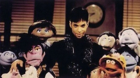Prince and the Muppets