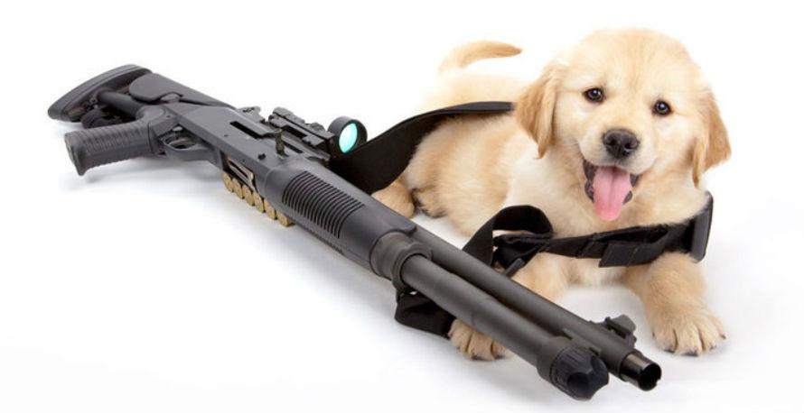 Puppies with Guns calendar