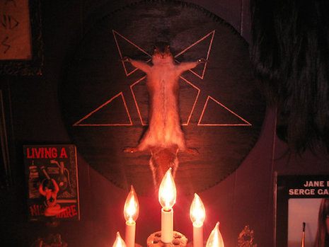 Satanic Ritual Squirrel taxidermy