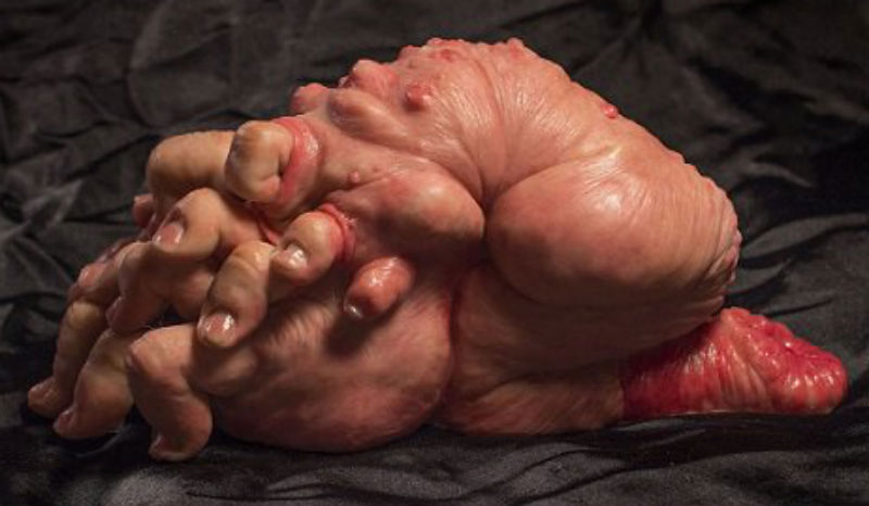 Meet The Fleshlettes, a loving family of hyper-realistic body horror mutants