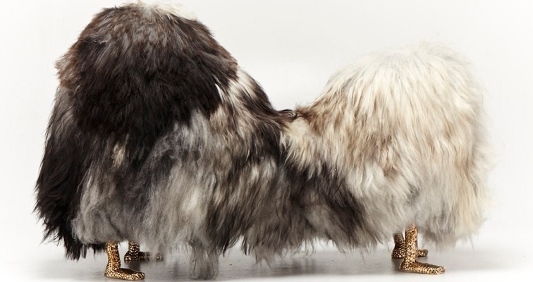 Furry furniture that looks like taxidermied Dr. Seuss creatures