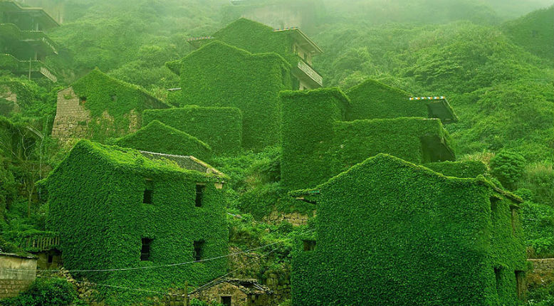 Fascinating photographs of an abandoned Chinese fishing village reclaimed by nature