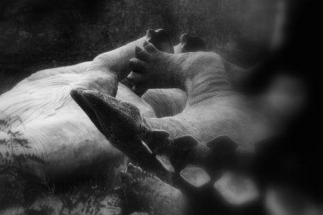 dinosaur_graveyard_02